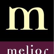 logo oficial corportivo Melior